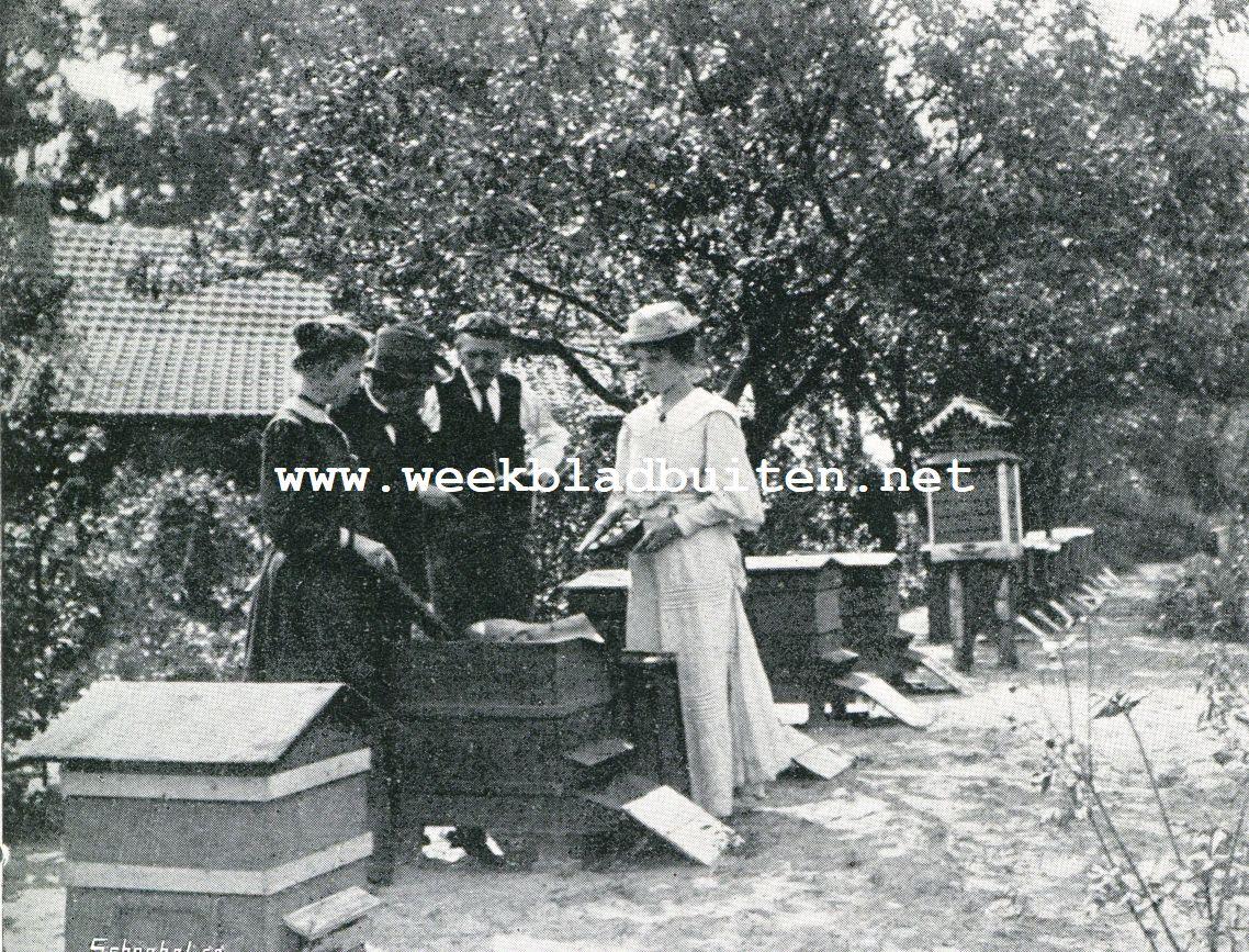Onderzoek van een kast in 't vroege voorjaar. De imkeres houdt een raampje vast met de koplaat omlaag, om naar broedcellen te zoeken, terwijl toch de raat verticaal blijft. De afgebeelde kasten zijn van het systeem Tukker, die op groote imkerijen, waar met met de bijen reist, goed voldoen