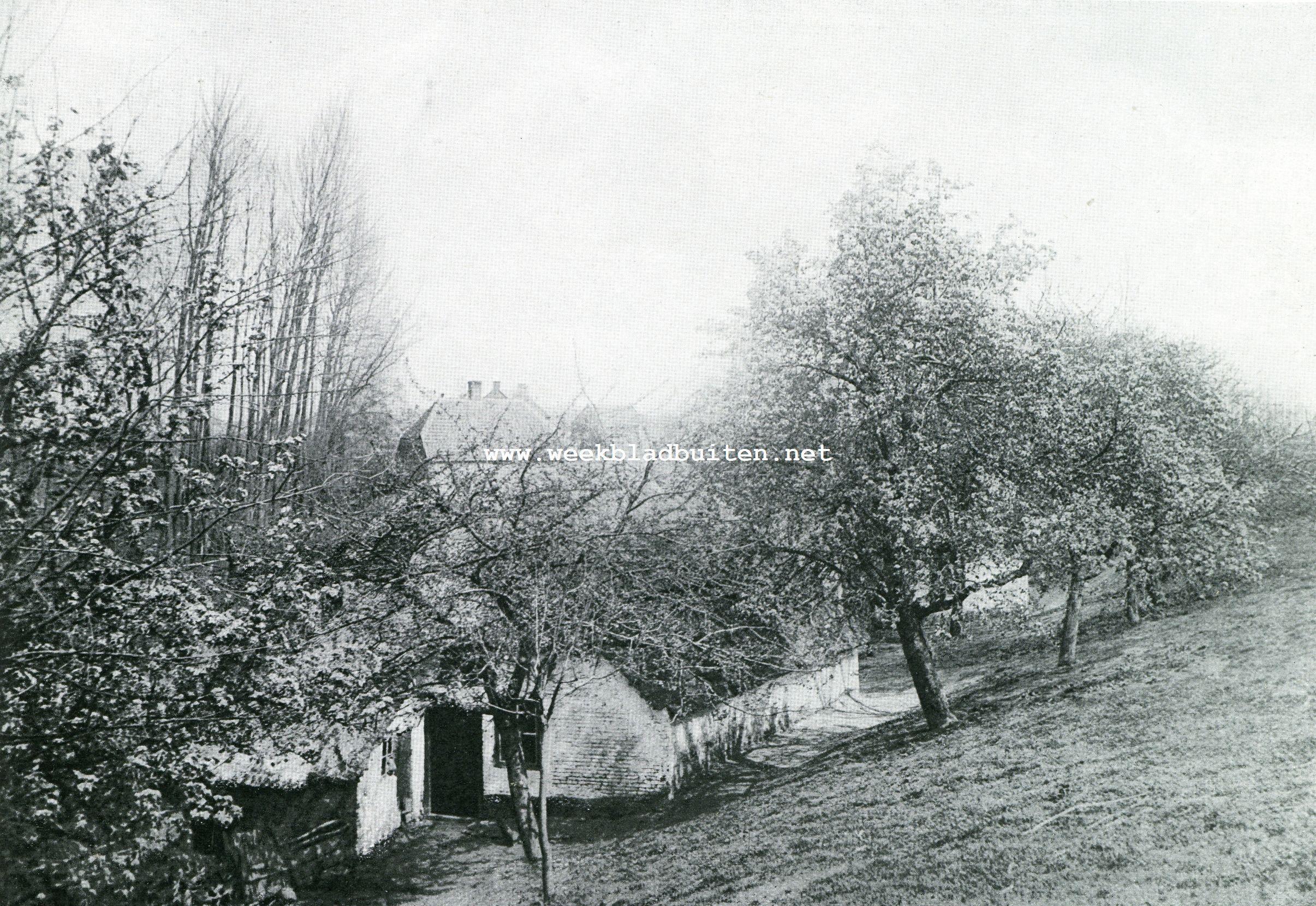 Bloeiende vruchtboomen aan den Waaldijk