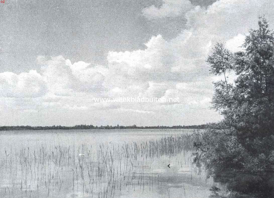 Het meer de Ijzeren Man bij Vught (Noord-Brabant)