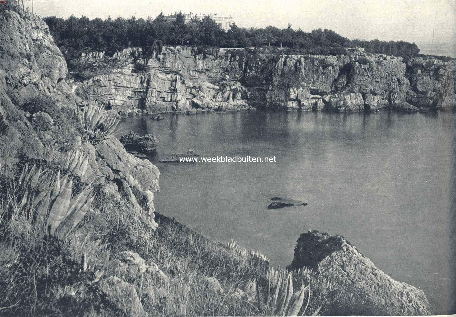 Rotsformaties en plantengroei aan de Azuurkust. Kleine baai aan den oostrand van het schiereiland La Garoupe. Uit het bosch van zeedennen verrijst de beroemde villa Eilenroc, de uit de kaap de Goede Hoop ingevoerde decoratieve aloë groeit hier in het wild tegen de kalkrotsen op den voorgrond