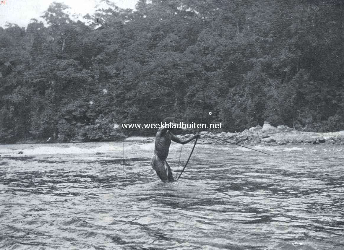 Een Afrikaansche samenleving in het binnenland van Suriname. Visch-schietende Boschneger. Groote visschen worden met pijlen geschoten, kleinere met netten bemachtigd; ook wordt wel gebruik gemaakt van vergif (hekoe, aftreksel van een liaan), waardoor de visschen bedwelmen